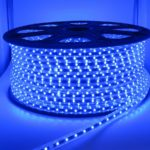 100 Meter High Voltage LED Strip Blue