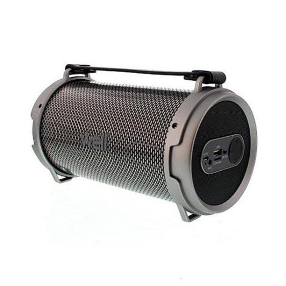 Φορητό Ηχείο Bluetooth 24W w/FM Radio Well