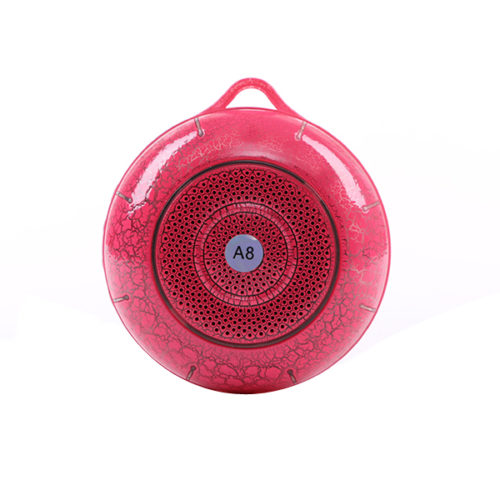 speaker brand with bluetooth