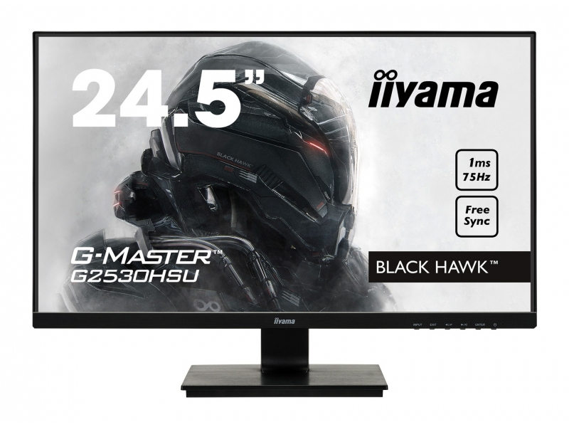 IIYAMA 62.2cm (24,5) G2530HSU-B1 169 HDMI+DP+USB black G2530HSU-B1